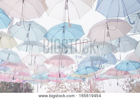 Decoration of Umbrella pattern with pastel color tone