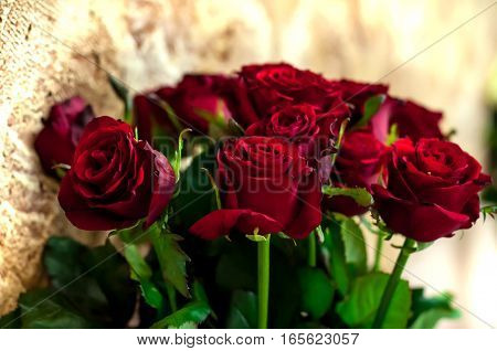 A beautiful bouquet of red roses closeup