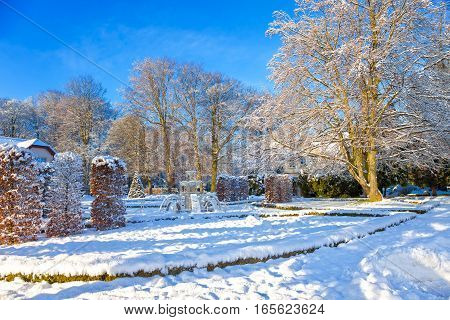 Snow covered city park in a winter day. Oliwa Poland.