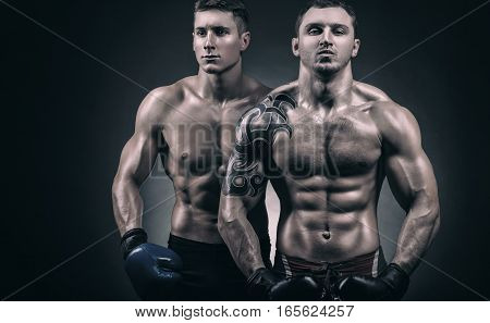 Two young boxer with boxing gloves before a fight on a black background