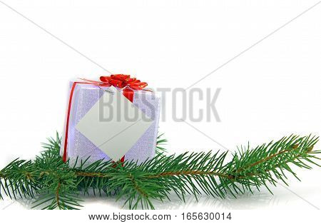 christmas decoration of the branches of spruce on a white background
