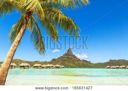View of the Otemanu mountain with palm tree and stunning lagoon. Bora-Bora. Tahiti. Polynesia