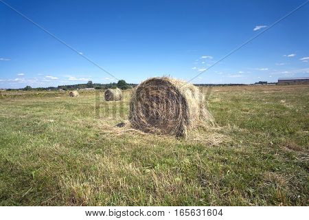 Countryside landscape with hay rolls on cultivate field in hot summer day
