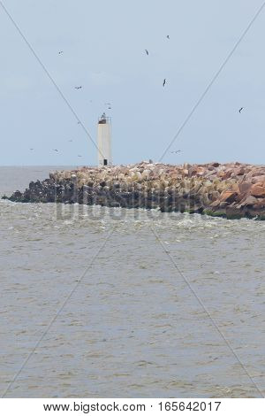 Lighthouse On Breakwater At Cassino Beach