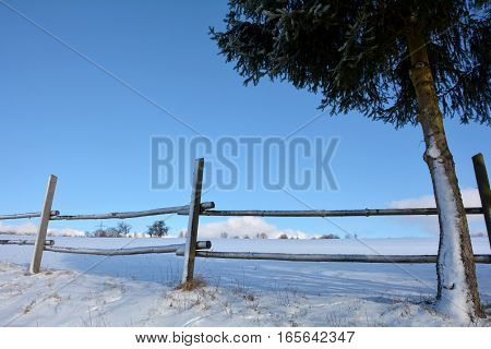 Wooden fence in winter with snow and blue sky, tree on the right