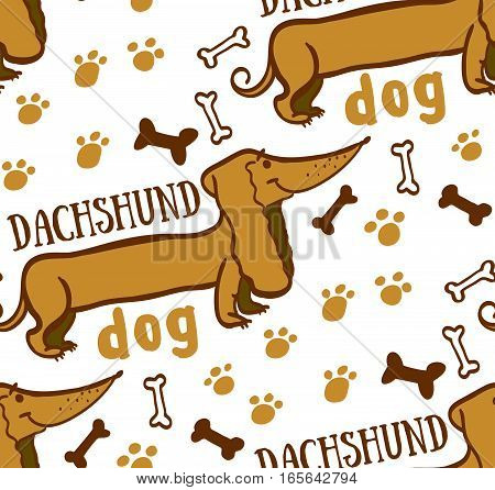 besshovnvya invoice with dachshund dog, bones, footprints, dog bone, freehand drawing, funny pet, dog breed, dog