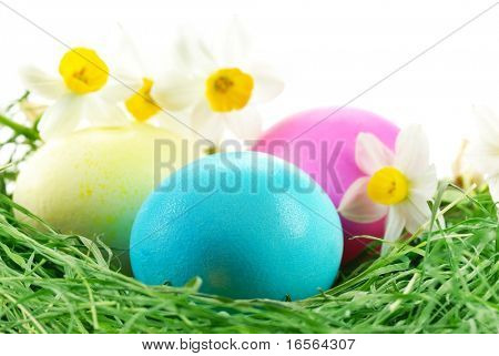 Easter Eggs sitting on grass