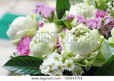 A Bunch Of Beautiful Lotus