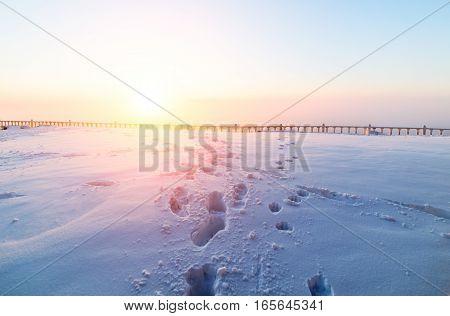Sunny Sunrise Over The Snowy Plain.
