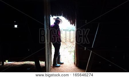 Farmer standing in his door, looking outside to his tobbaco plants, in Valle de Viñales, Cuba.