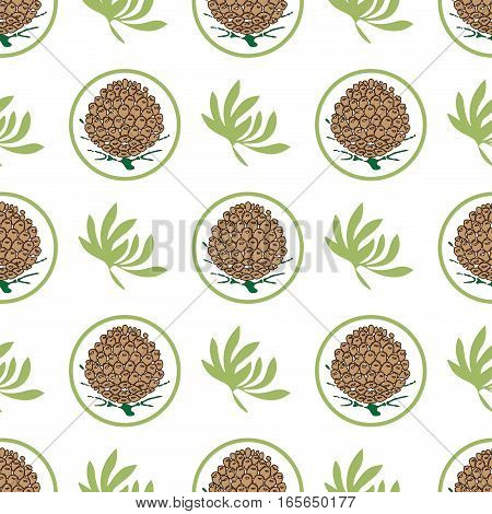 Seamless pattern with pine cones. Fir, cedar, spruce tree background. for eco label or eco production