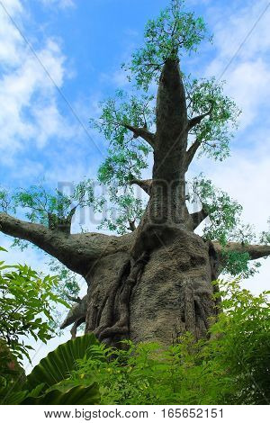 Imitation of huge baobab in the garden