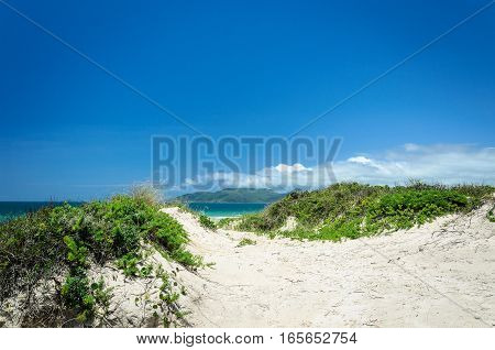 Sand Path To The Blue Ocean In The Background On A Beautiful Summer Day. Beach Of Santa Catarina, Br