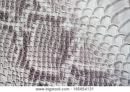 Texture of genuine leather close-up, embossed under the skin a reptile, trend background