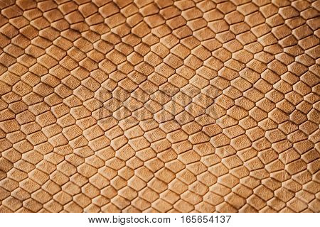 Texture of genuine leather close-up, with embossed brown scales of reptiles, the trend pattern
