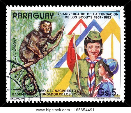 PARAGUAY - CIRCA 1982 : Cancelled postage stamp printed by Paraguay, that shows Scouts and monkey.