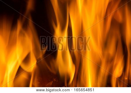 Background on black forks of flames yellow orange and red