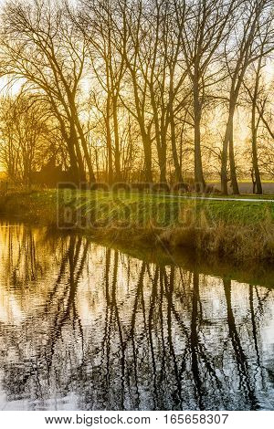 Backlit image of bare tree branches reflected in the mirror smooth water surface of a flooded Dutch polder during sunset say in the winter season.