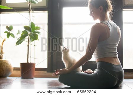 Young attractive smiling woman practicing yoga, sitting in Half Lotus exercise, Ardha Padmasana pose, working out, wearing sportswear, grey pants, bra, indoor, home interior background, cat near her