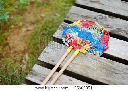 Two Butterfly Nets On A Wooden Path