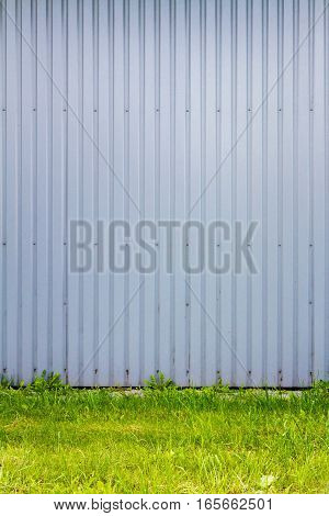 Light blue industrial grooved metal wall and some green grass