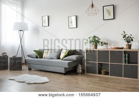 Multifunctional Living Room Area