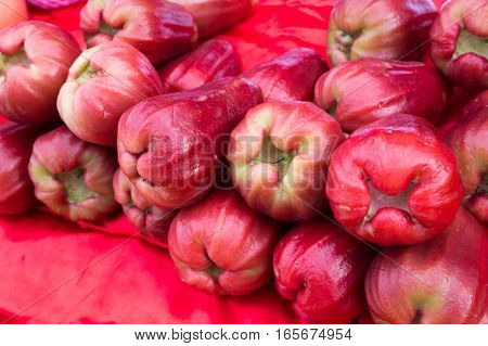 The Tropical Fruit Wax Apples On The Market