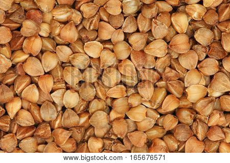 Roasted buckwheat seeds background. Raw buckwheat porridge extreme closeup