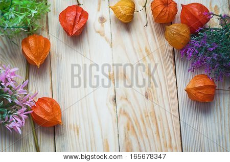 Physalis red lantern is a decoration in winter day