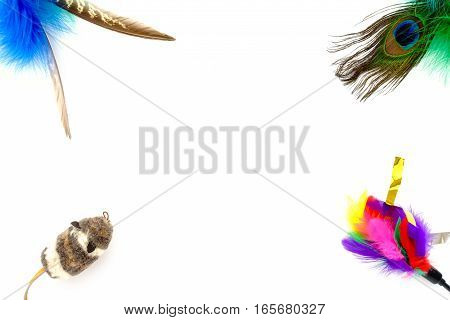 Colorful feather cat toys and mouse as background frame on white with lots of copy space.