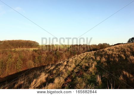 English landscape with woodland and meadows on the rolling hillsides of the scenic Yorkshire wolds in winter.