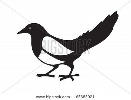 Magpie. Black and white image on white background. Vector isolated.