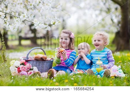 Little children eating lunch outdoors. Kids with picnic basket in spring garden with blooming apple and cherry tree. Preschooler girl toddler boy and baby eat and drink in summer park on blanket.