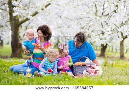 Big family with three little children eating lunch outdoors. Parents and kids with picnic basket in spring garden. Mother father preschooler girl toddler boy and baby eat and drink in summer park.