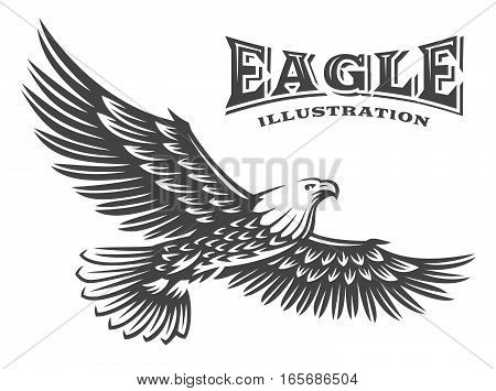 Eagle vector illustration, emblem design on white background