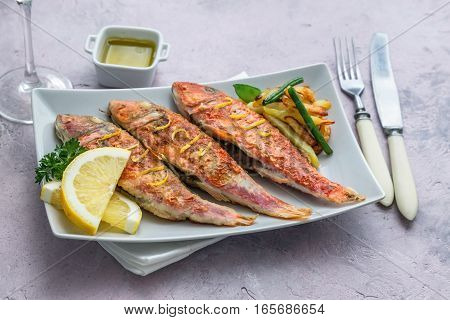 Grilled red mullets on square plate selective focus on front
