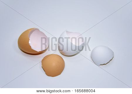 Macro photo of chicken eggs shell. Isolated on wooden white background.