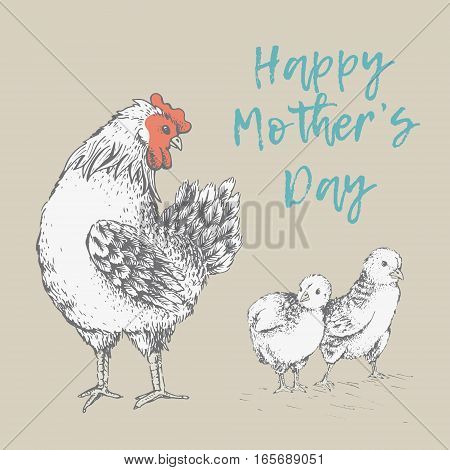 Design with brood-hen on beige background. Happy Mothers day. Hand drawn. Hen looks with tenderness and love for its baby chickens. Picture of vector for your design. Handmade illustration.