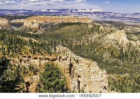 Bryce Canyon National Park Valley in Utah