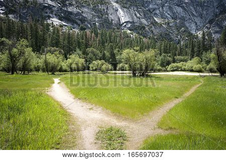 Plain in Yosemite Valley at Merced River bank Yosemite national Park