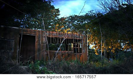 A burned and abandon container in the woods