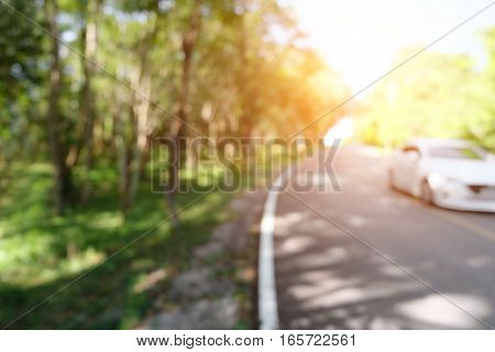 Blur curve road in green autumnal forest mountains in the national park with orange sunlight. Soft focus nature landscape sunrays flare background.