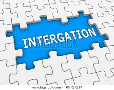 Integration - 3D Puzzle With White Word.
