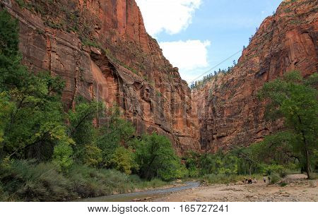 The national park Zion canyon in America
