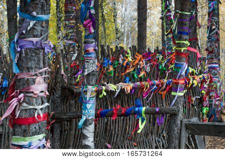 Multiple colorful ribbons tied to tree trunks and a fence made from branches at a popular wedding venue at the Eurasian line near Yekaterinburg Russia. Ribbons symbolize wishes made, love, luck and memories of the departed. Shallow depth of field.