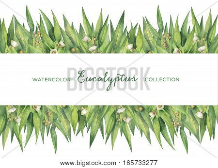 Watercolor hand painted green floral card with eucalyptus leaves and branches isolated on white background. Healing Herbs for cards, wedding invitation, posters, save the date or greeting design.