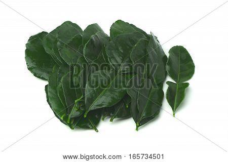 Kaffir Lime Leaf or Bergamot Leaf on white background