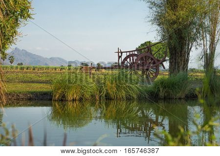 Ox carts alongside canals and fields with a mountain and blue sky background grass in front of a blurred.
