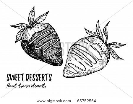 Hand Drawn Vector Illustration - Sweet Strawberry With White And Milk Chocolate. Design Elements In