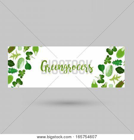 Greengrocers flyer or header with green salad vegetable leaves on white. Vector illustration